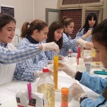 Pràctiques al laboratori – 1r ESO.